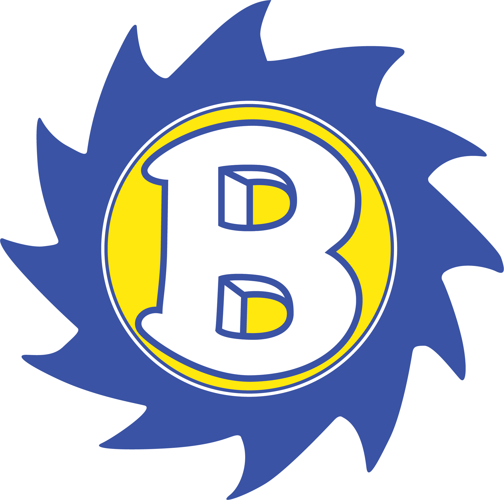 Brooklyn City Schools Logo